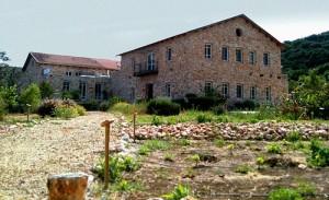 Израильские вина : Винодельня Амфора Израиль Здание