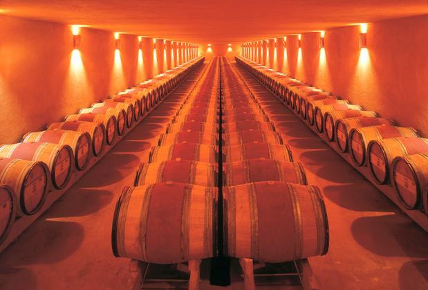 Израильское вино - Винодельня Домейн ду Кастель -  Подвал