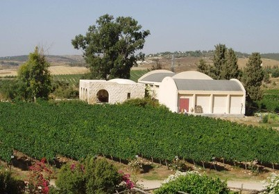Израильское вино: Винодельня Кло де Гат- Здание
