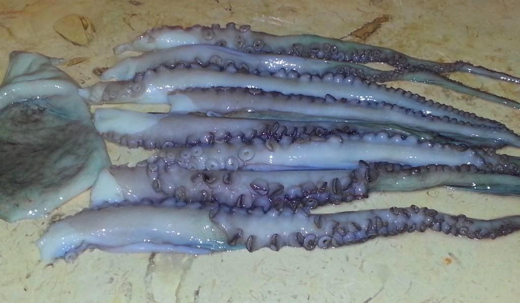 Разделанный осьминог